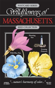 Massachusetts Bouquet Seeds