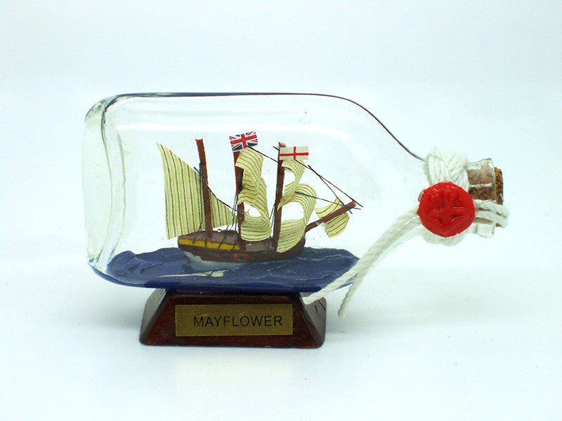 Mayflower In Bottle