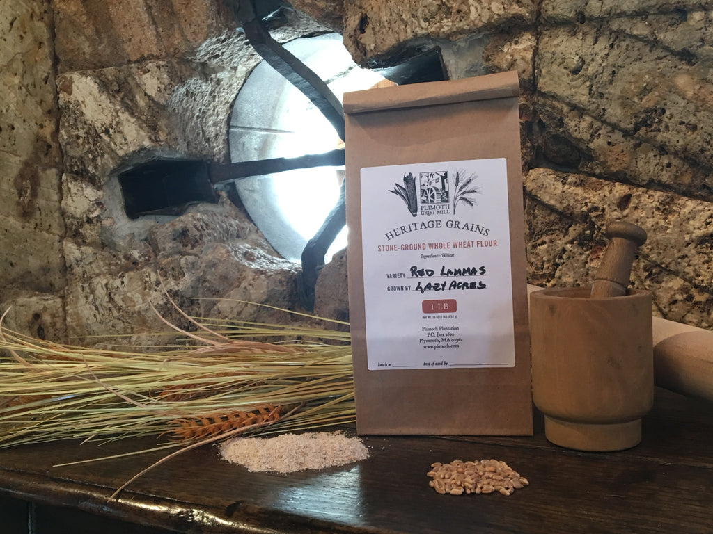 Plimoth Grist Mill Heritage Red Lammas Whole Wheat Flour