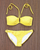 BAR III + RALPH LAUREN Bikini Pair