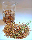 2 lbs Sterilized Rye Grain / Berries