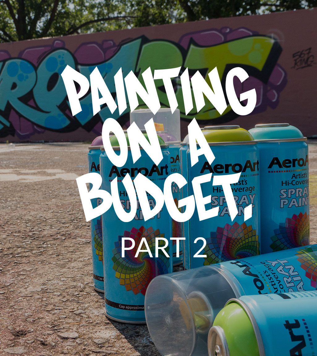 VIDEO - PAINTING ON A BUDGET part 2