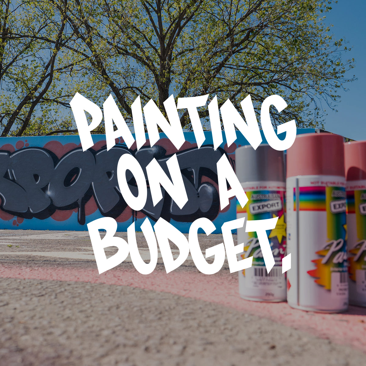 VIDEO - PAINTING ON A BUDGET