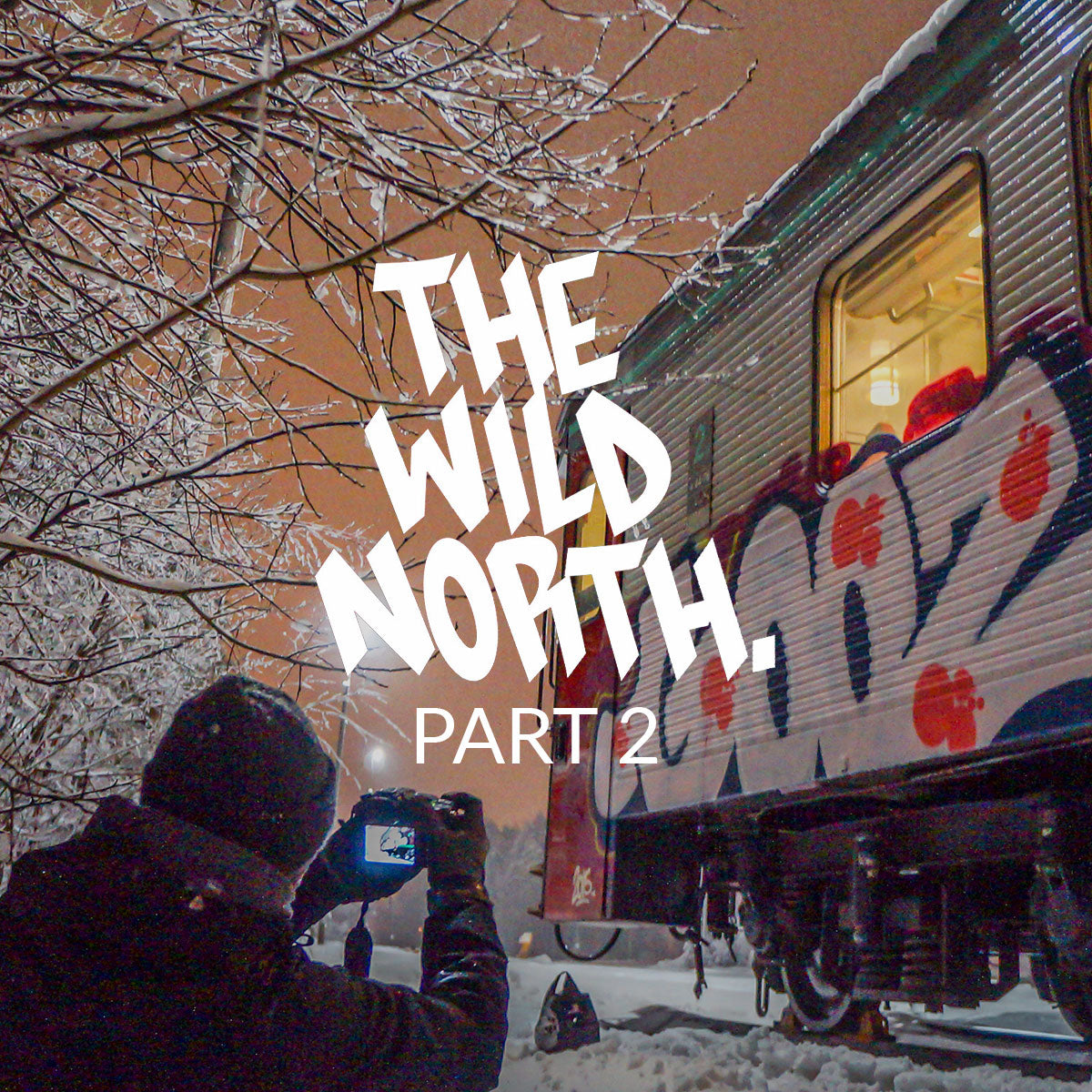 VIDEO - THE WILD NORTH 2