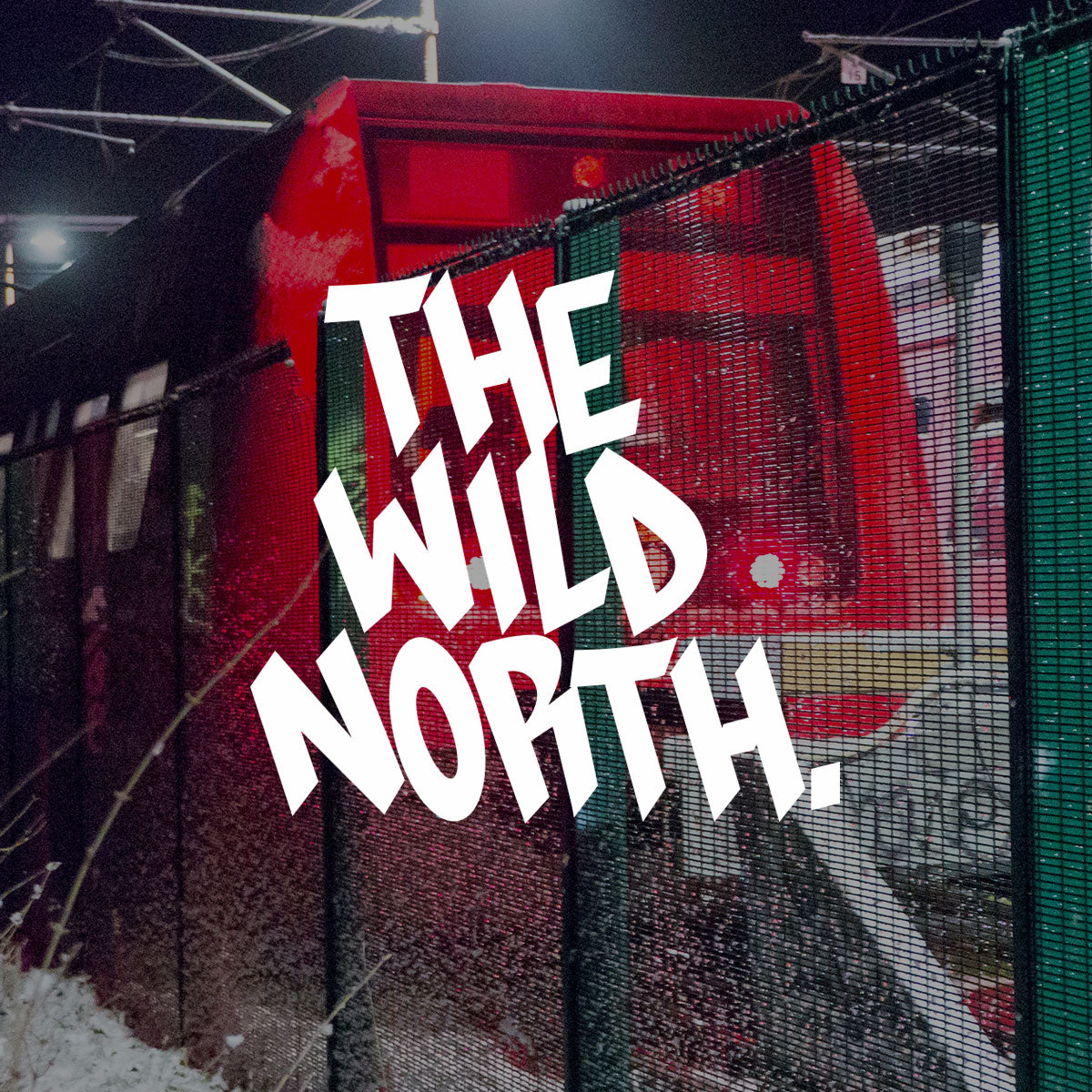 VIDEO - The Wild North