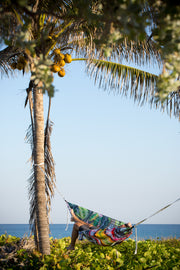 Vista Hammock (Fishing Lures)