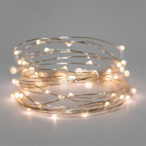 Silver Wire 50 LED - Battery Battery String Night Light