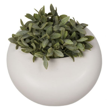 Round Wall Planter Small