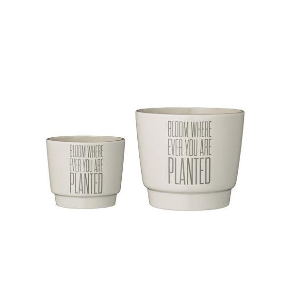 Bloom Wherever You Are Planted Pot Set