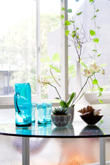 Indoor_Plant_Style 1