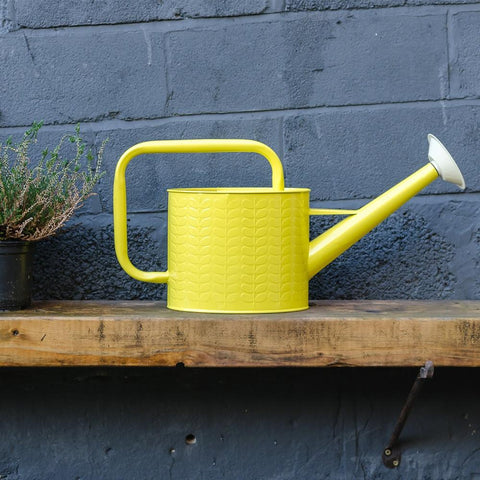Yellow-Watering-Can-in-Garden