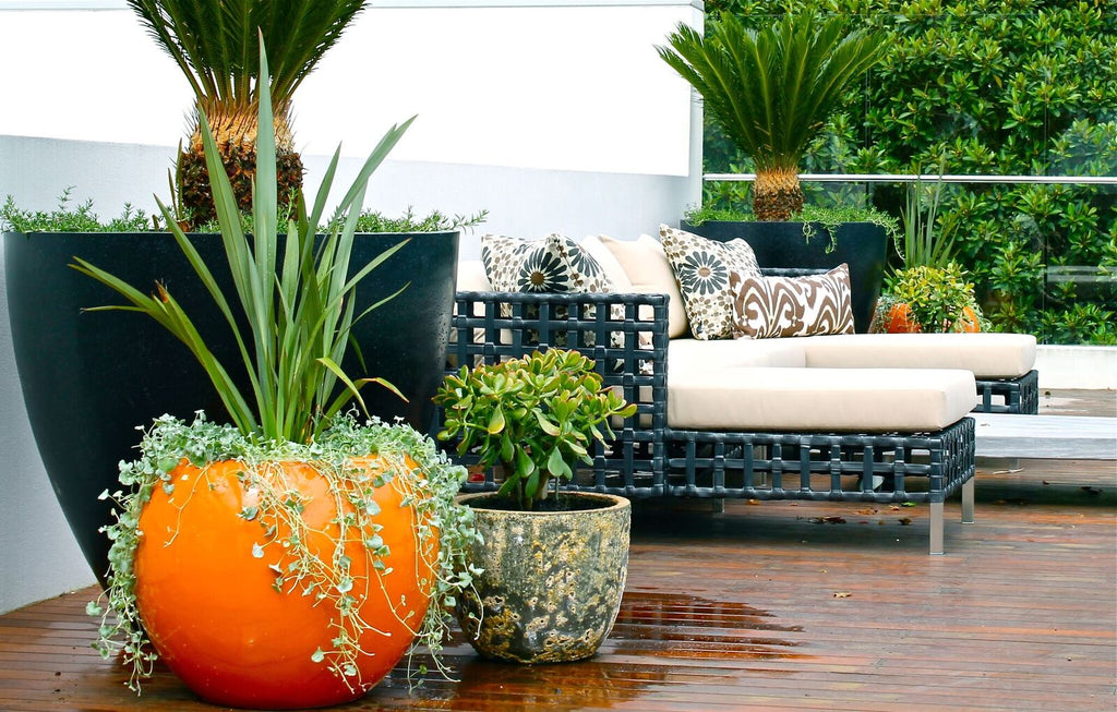 Balcony Garden Design Sydney | Terrace Outdoor Living