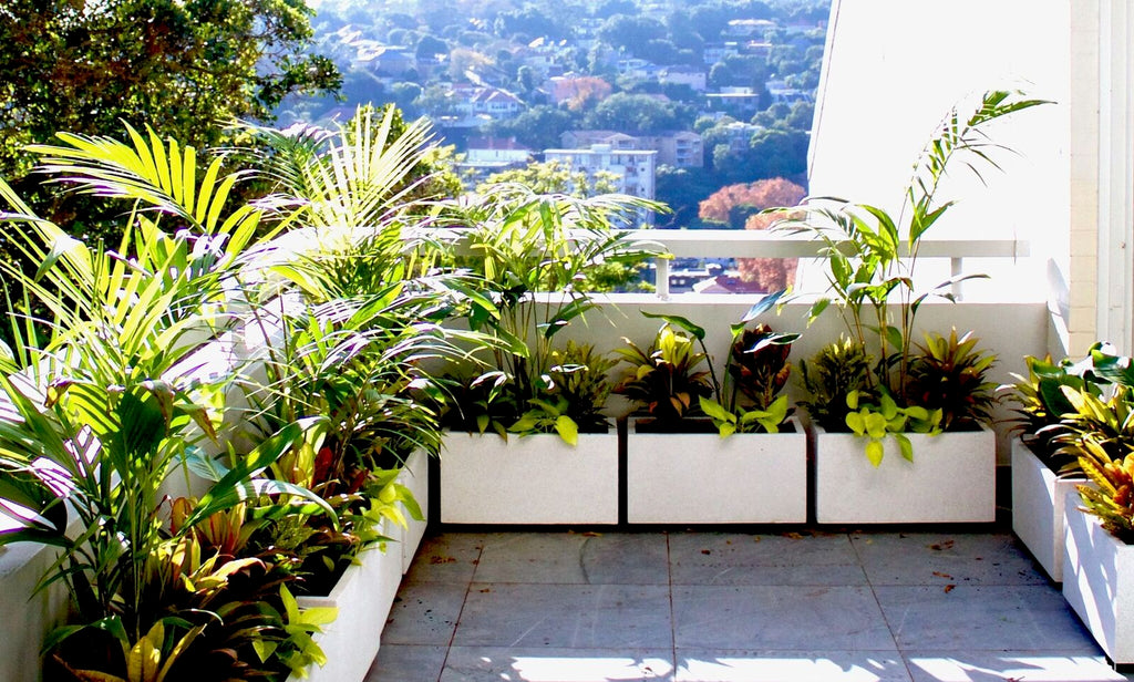 balcony plant pots sydney lightweight terrace outdoor living