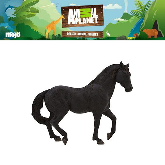 Animal Planet   Model   387109P ของเล่น เสริมความรู้  Andalusian Stallion Black Horse Replica