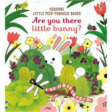 Load image into Gallery viewer, Usborne Are you there little bunny 6M+ หนังสือ Are you there little bunny สำหรับเด็ก 6 เดือนขึ้นไป