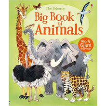 Load image into Gallery viewer, Usborne books Big book of big animals 4Y+หนังสือBig book of big animals สำหรับเด็ก 4 ปี ขึ้นไป