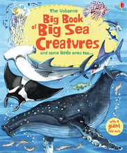 Load image into Gallery viewer, Usborne books-Big book of big sea creatures 4Y+หนังสือBig book of big sea creaturesสำหรับเด็ก 4 ปี ขึ้นไป