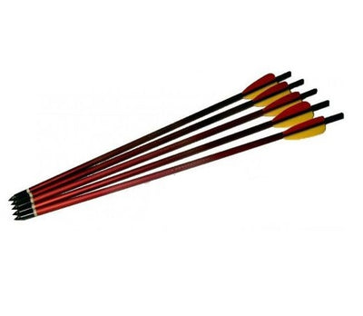 EK Archery Aluminium 20 Inch Crossbow Bolts