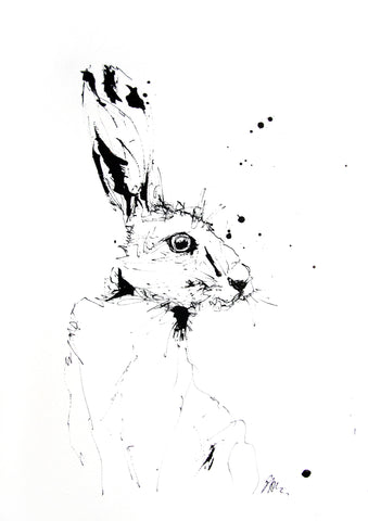 JEN BUCKLEY  signed PRINT of my original HARE indian ink drawing Large A3    - Jen Buckley Art limited edition animal art prints