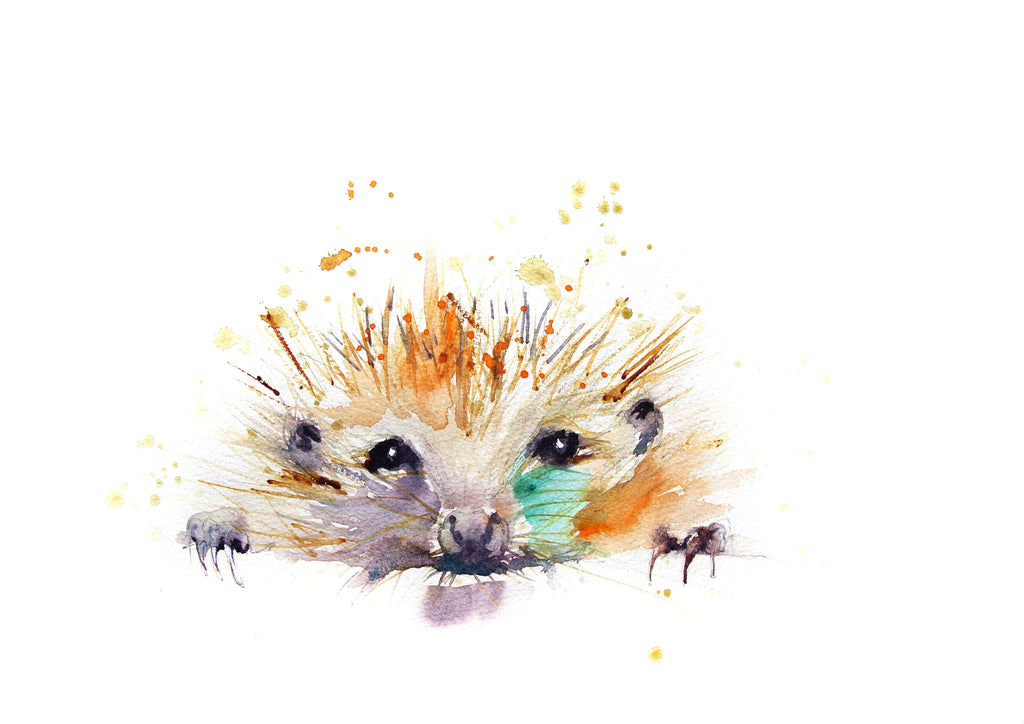 JEN BUCKLEY contemporary PRINT of my Original HEDGEHOG watercolour signed  - Jen Buckley Art limited edition animal art prints