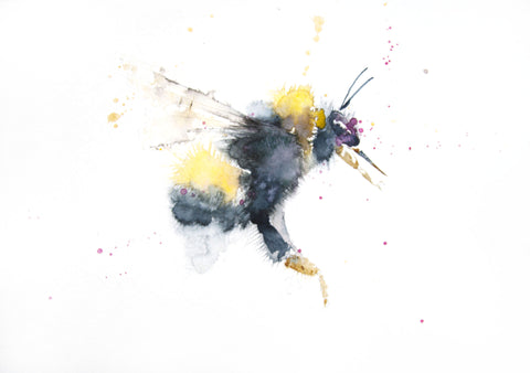 JEN BUCKLEY ART  signed PRINT  of my original BUMBLE BEE watercolour