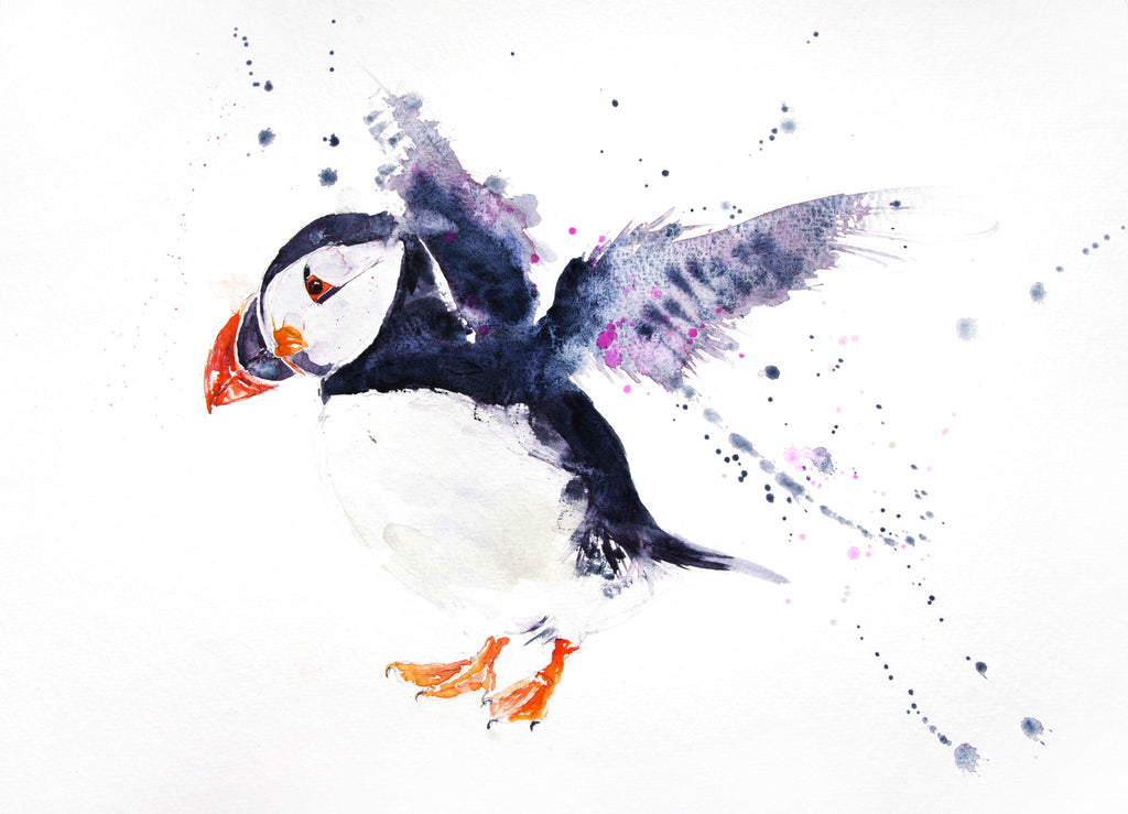 JEN BUCKLEY signed LIMITED EDITON PRINT of my original Puffin watercolour   - Jen Buckley Art limited edition animal art prints