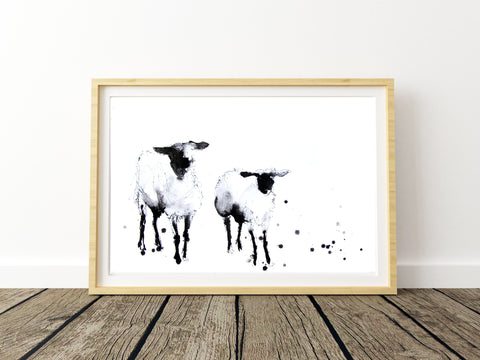 Black faced sheep print from original ink drawing by Jen Buckley