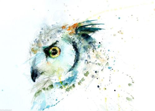 JEN BUCKLEY signed LIMITED EDITON PRINT of my original Long eared OWL - Jen Buckley Art limited edition animal art prints