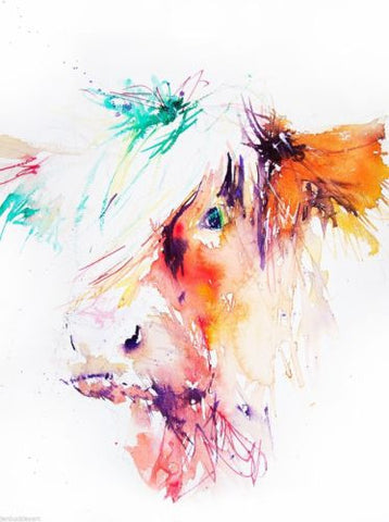 JEN BUCKLEY ART  signed PRINT of my original HIGHLAND COW watercolour - Jen Buckley Art  - 1