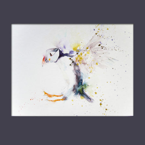 Signed LIMITED EDITION PRINT of original PUFFIN watercolour    - Jen Buckley Art limited edition animal art prints