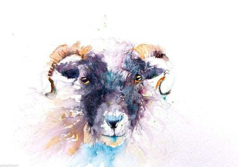 JEN BUCKLEY signed LIMITED EDITON PRINT of my SHEEP watercolour