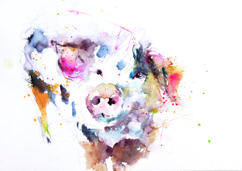 JEN BUCKLEY   signed PRINT of my original Happy Pig watercolour - Jen Buckley Art limited edition animal art prints