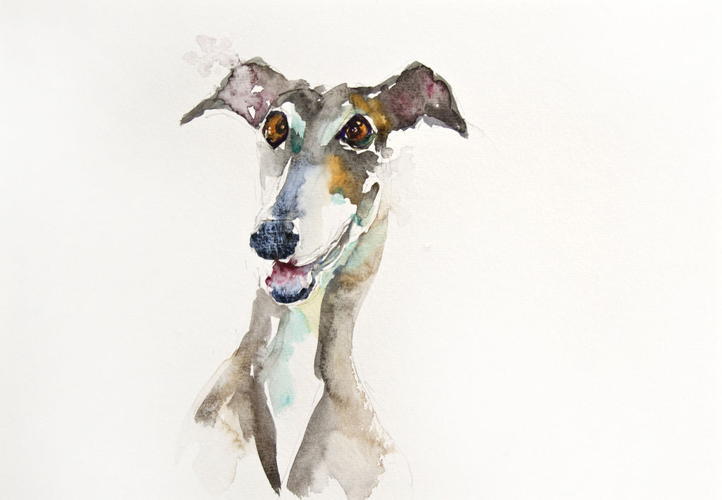 JEN BUCKLEY signed LIMITED EDITON PRINT 'Greyhound' - Jen Buckley Art limited edition animal art prints