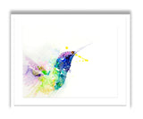JEN BUCKLEY ART  signed limited edition PRINT of original HUMMINGBIRD watercolour