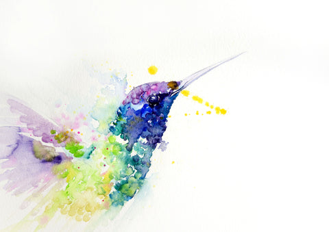 JEN BUCKLEY ART  signed limited edition PRINT of original HUMMINGBIRD watercolour - Jen Buckley Art limited edition animal art prints