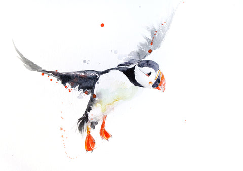 JEN BUCKLEY signed LIMITED EDITON PRINT of my original Puffin watercolour