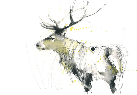 Red deer, stag print limited edition