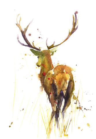 JEN BUCKLEY signed LIMITED EDITON PRINT of my original STAG  - Jen Buckley Art limited edition animal art prints