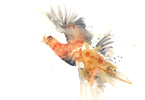 limited edition PRINT of my original RED GROUSE watercolour - Jen Buckley Art limited edition animal art prints