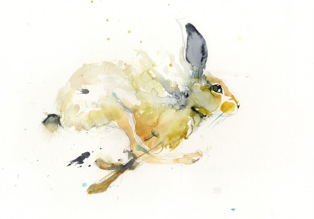 limited edition PRINT of my original running HARE watercolour - Jen Buckley Art limited edition animal art prints