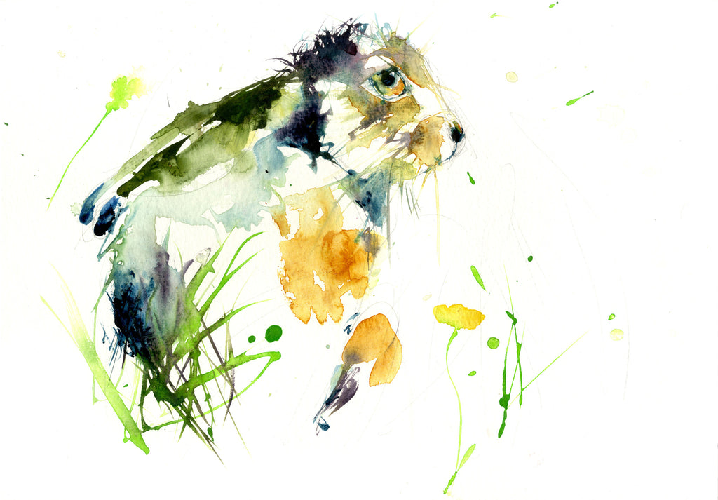 limited edition PRINT of my original HARE watercolour - Jen Buckley Art limited edition animal art prints