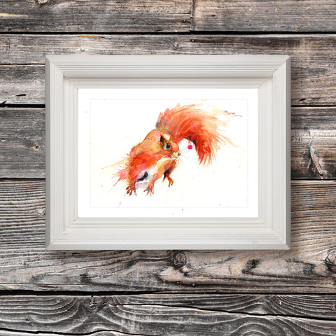 limited edition PRINT of my original RED SQUIRREL watercolour
