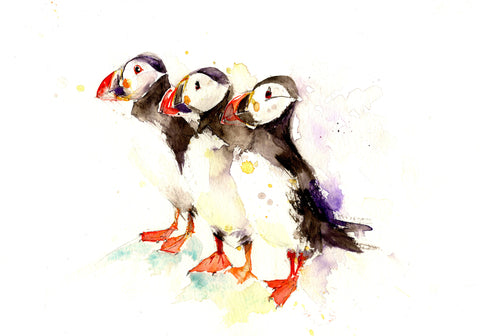signed LIMITED EDITON PRINT of my original  three puffins