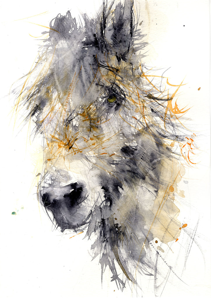 limited edition PRINT of my original DONKEY watercolour - Jen Buckley Art limited edition animal art prints