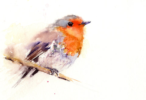 ROBIN bird watercolour limited edition print hand signed