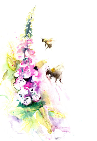 LIMITED EDITON PRINT of my original BUMBLE BEES on a foxglove