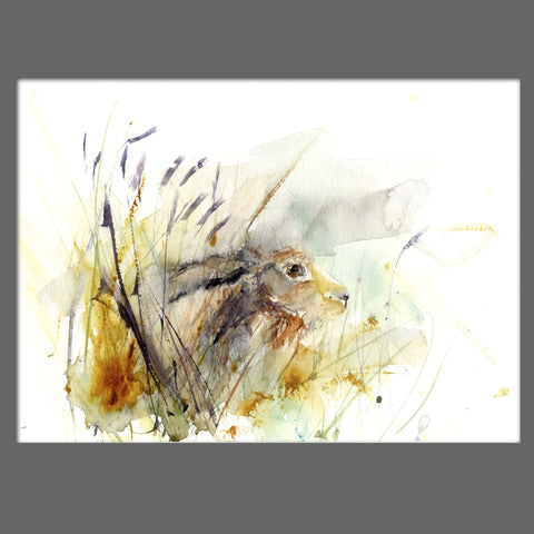 "Limited edition print ""hare in the meadow"" - Jen Buckley Art limited edition animal art prints"