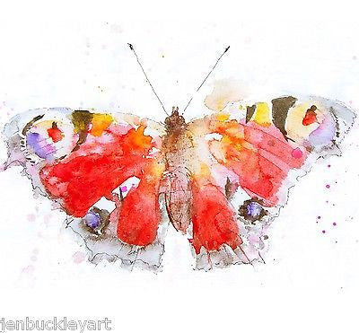 JEN BUCKLEY signed LIMITED EDITON BUTTERFLY PRINT   - Jen Buckley Art limited edition animal art prints