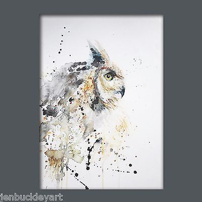 JEN BUCKLEY ART  signed PRINT of my original OWL watercolour A4   - Jen Buckley Art limited edition animal art prints