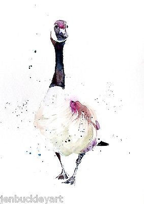 JEN BUCKLEY signed LIMITED EDITON PRINT of my original CANADA GOOSE    - Jen Buckley Art  - 1